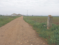 the silver way, ruta de la plata, guia via plata, road to santiago via plata, lodge in road to santiago, albergues, pelgrim lodge, the road to santiago, road to santiago, croad to santiago of compostela, caminosantiago com, hotles road to santiago